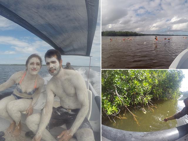 Excursion dans la réserve de Rio Lagartos au Mexique